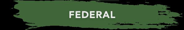 federal banner green